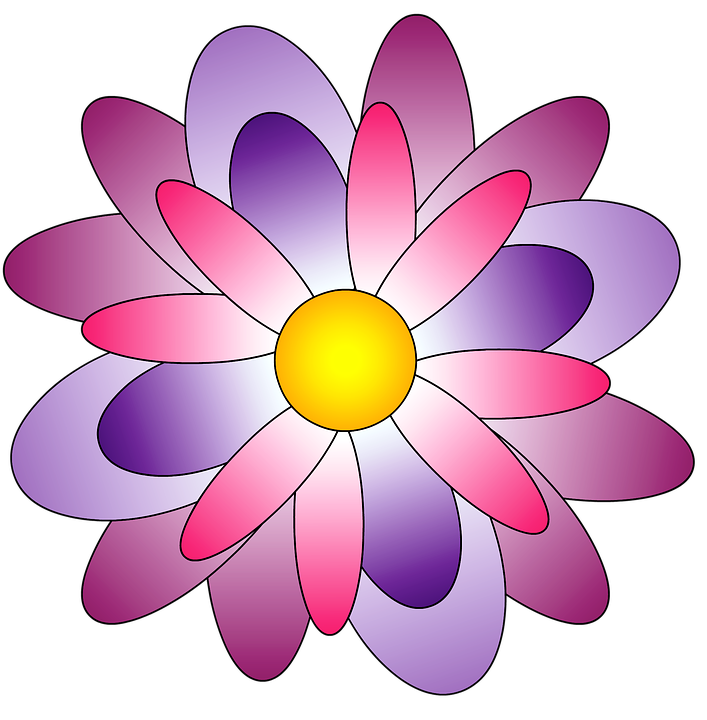 Flower, Rosa, Color Pink, Purple, Lilac, Flowers - Flowers Color PNG