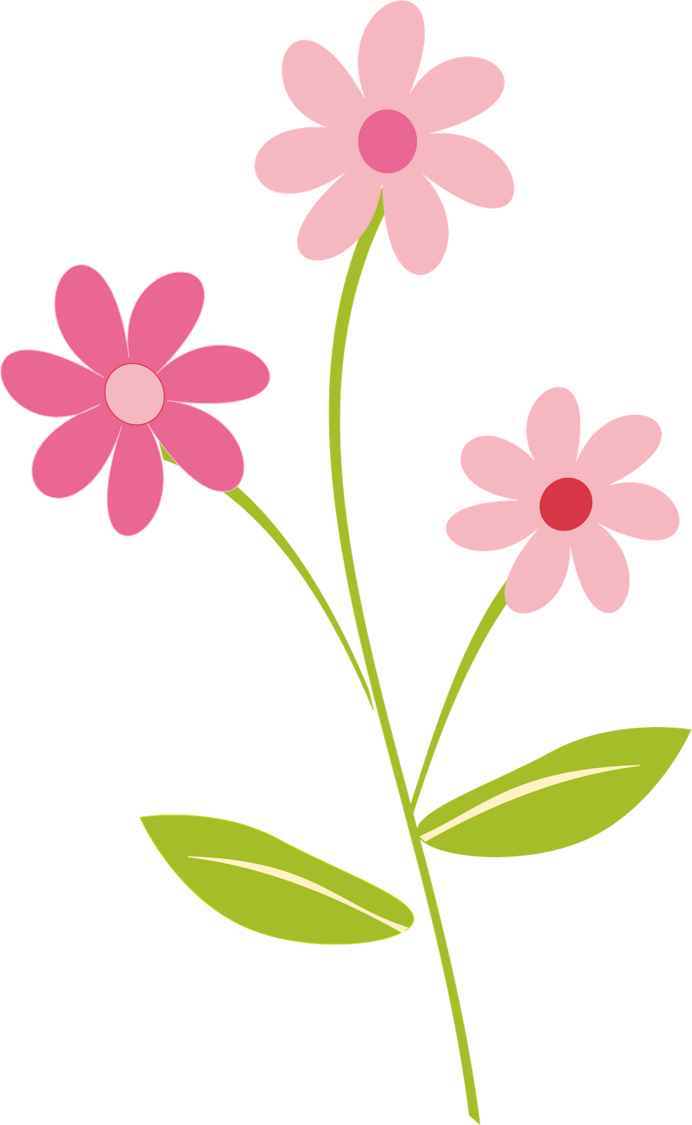 Flowers Color PNG - 17839