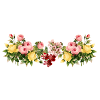 Flowers Color PNG - 17837