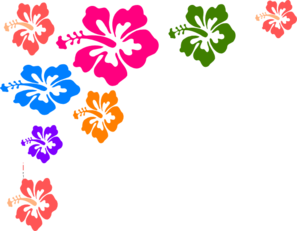 Flowers Color PNG