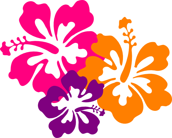 Flowers Color PNG - 17831