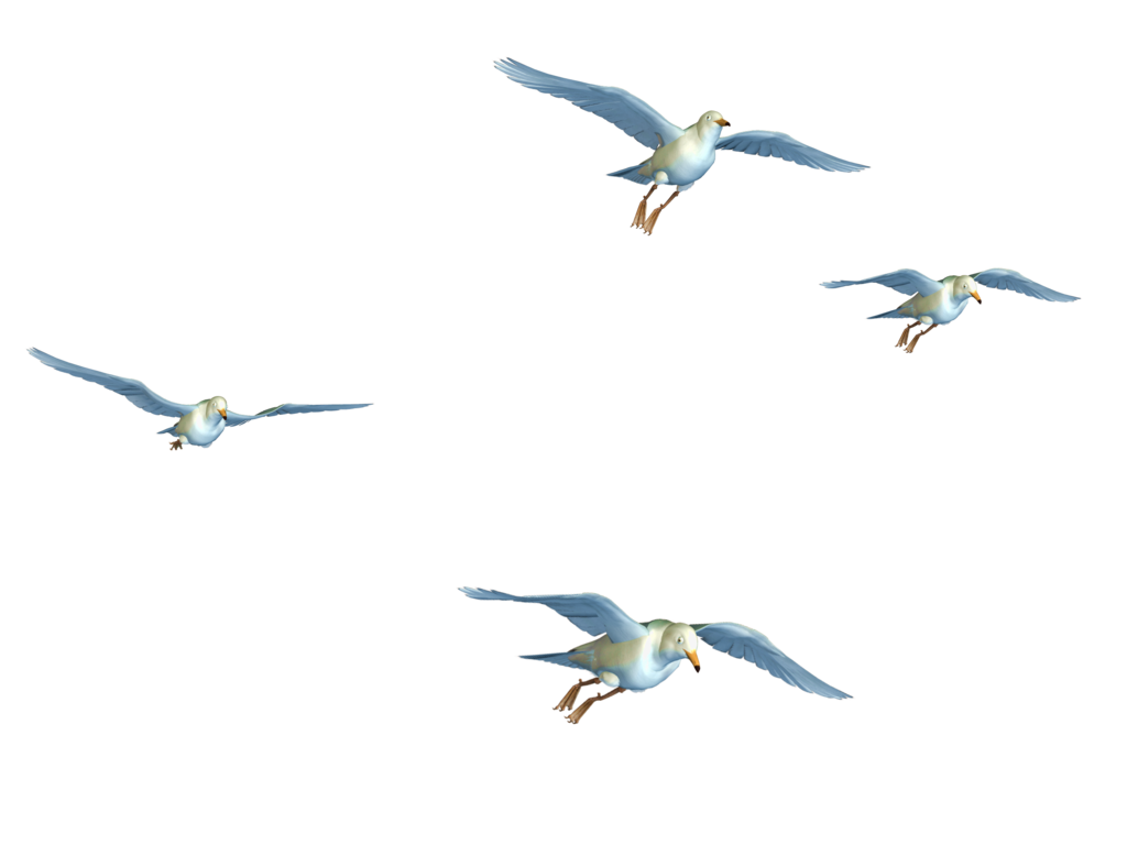 Flying Birds 01 PNG Stock by Roy3D PlusPng.com  - Fly HD PNG