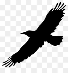 Big Bird Flight Crows Clip art - Big Bird Cliparts - Flying Crow PNG Black And White