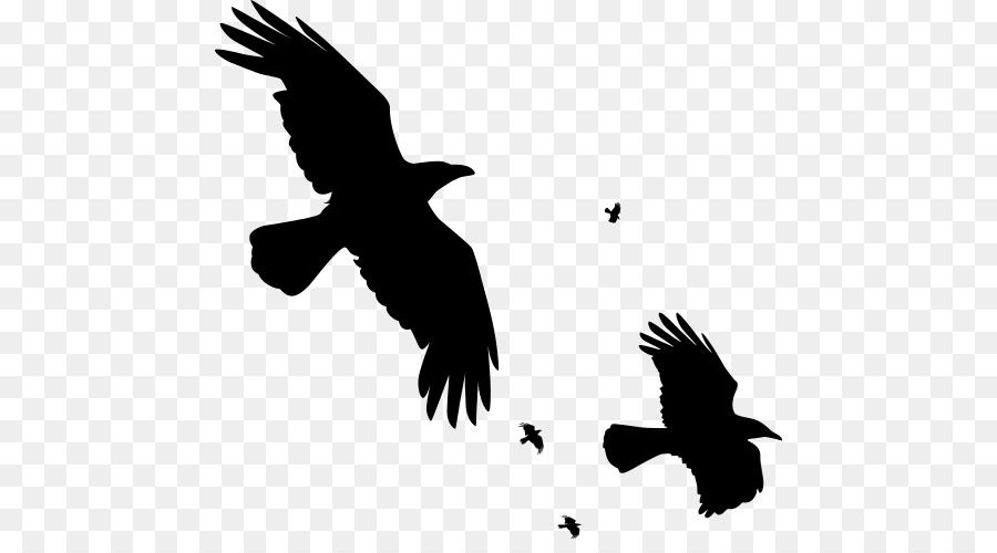 Flying Crow PNG Black And White - 153877
