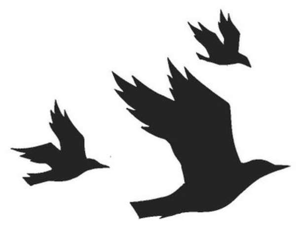 Download this image as: - Flying Crow PNG Black And White