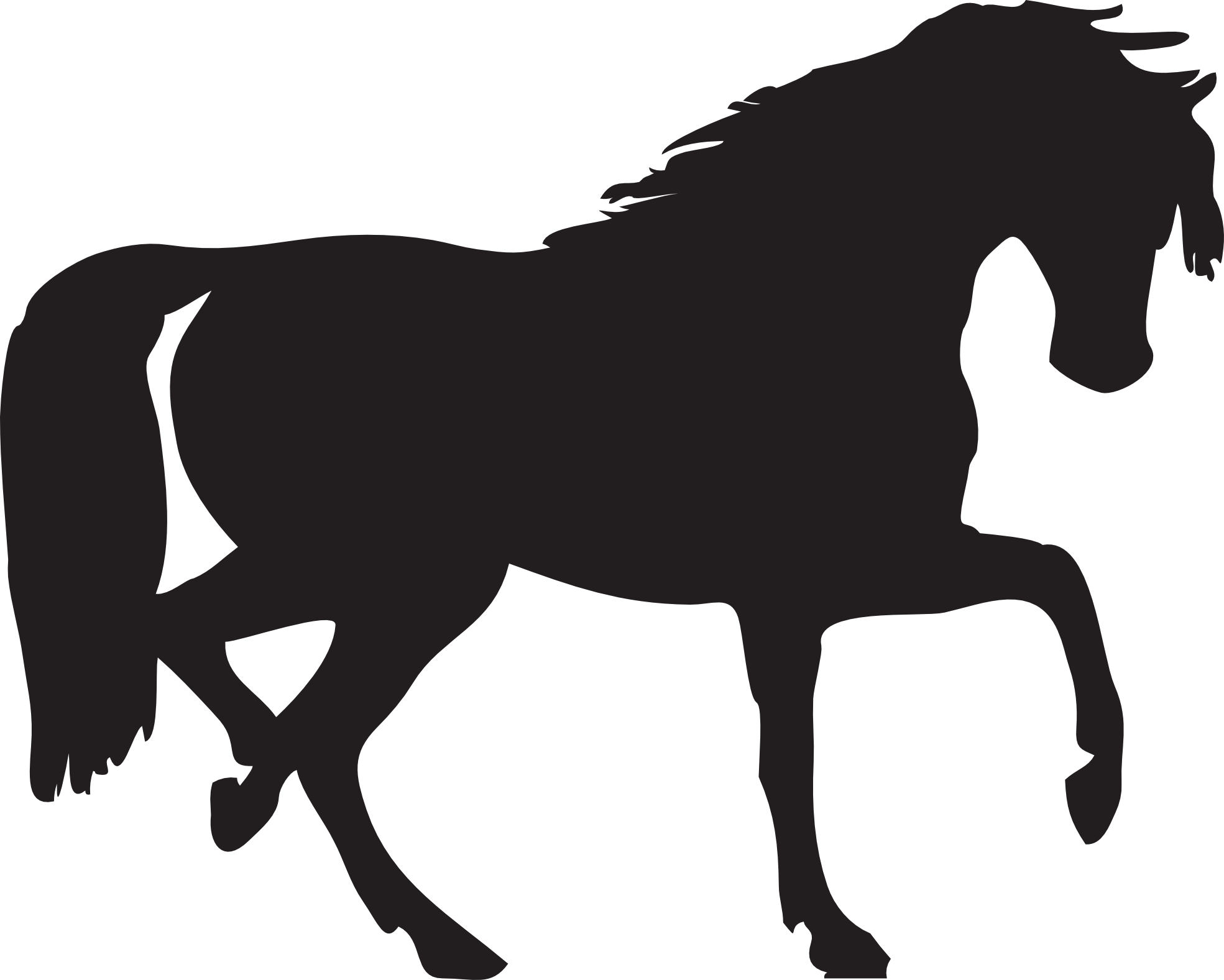 Black horse siluete png image - Foal PNG Black And White