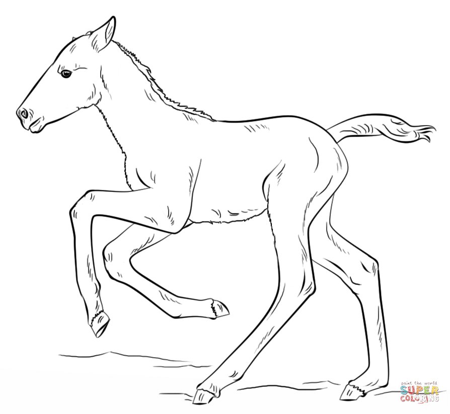Click the Cute Running Foal PlusPng.com  - Foal PNG Black And White
