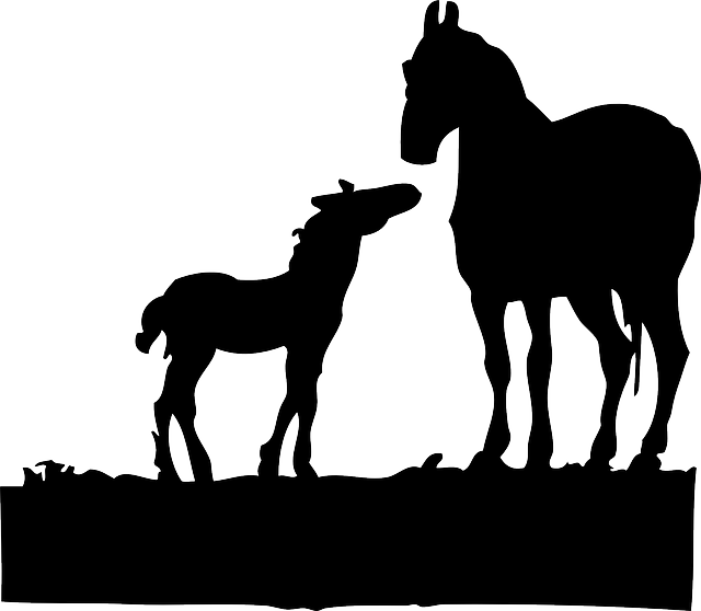 Free vector graphic: Foal, Horses, Silhouette, Animals - Free Image on  Pixabay - 33249 - Foal PNG Black And White