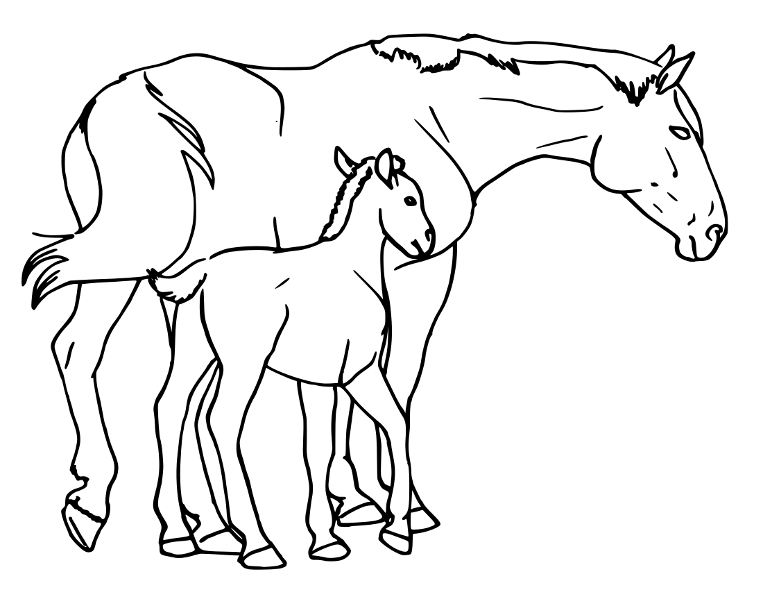 horse mare and foal - /animals/H/horses/horse_5/horse_mare_and_foal.png.html - Foal PNG Black And White