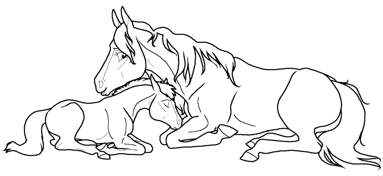 Mare Foal lineart PNG by kokamo77 PlusPng.com  - Foal PNG Black And White