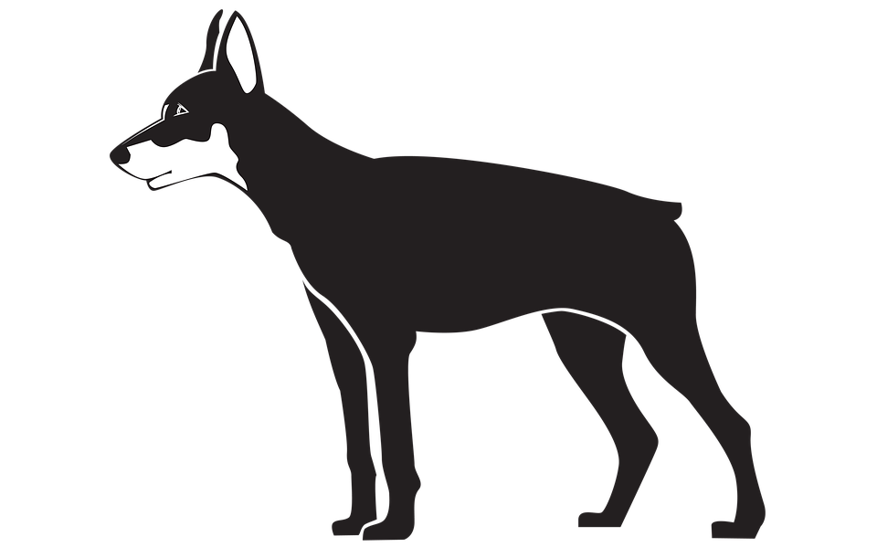 black dog illustration pet silhouette png - Free Black And White PNG Of Dogs