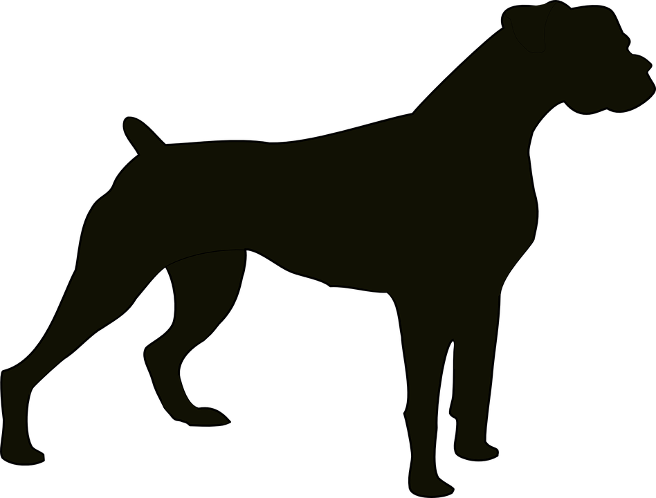 dog black animal bulldog domestic pet canine - Free Black And White PNG Of Dogs