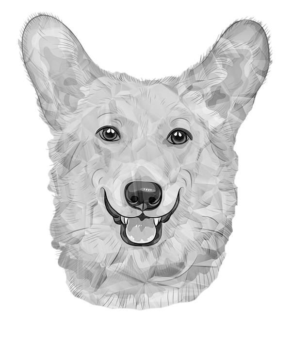 dog german dog white dogs black and white poly - Free Black And White PNG Of Dogs