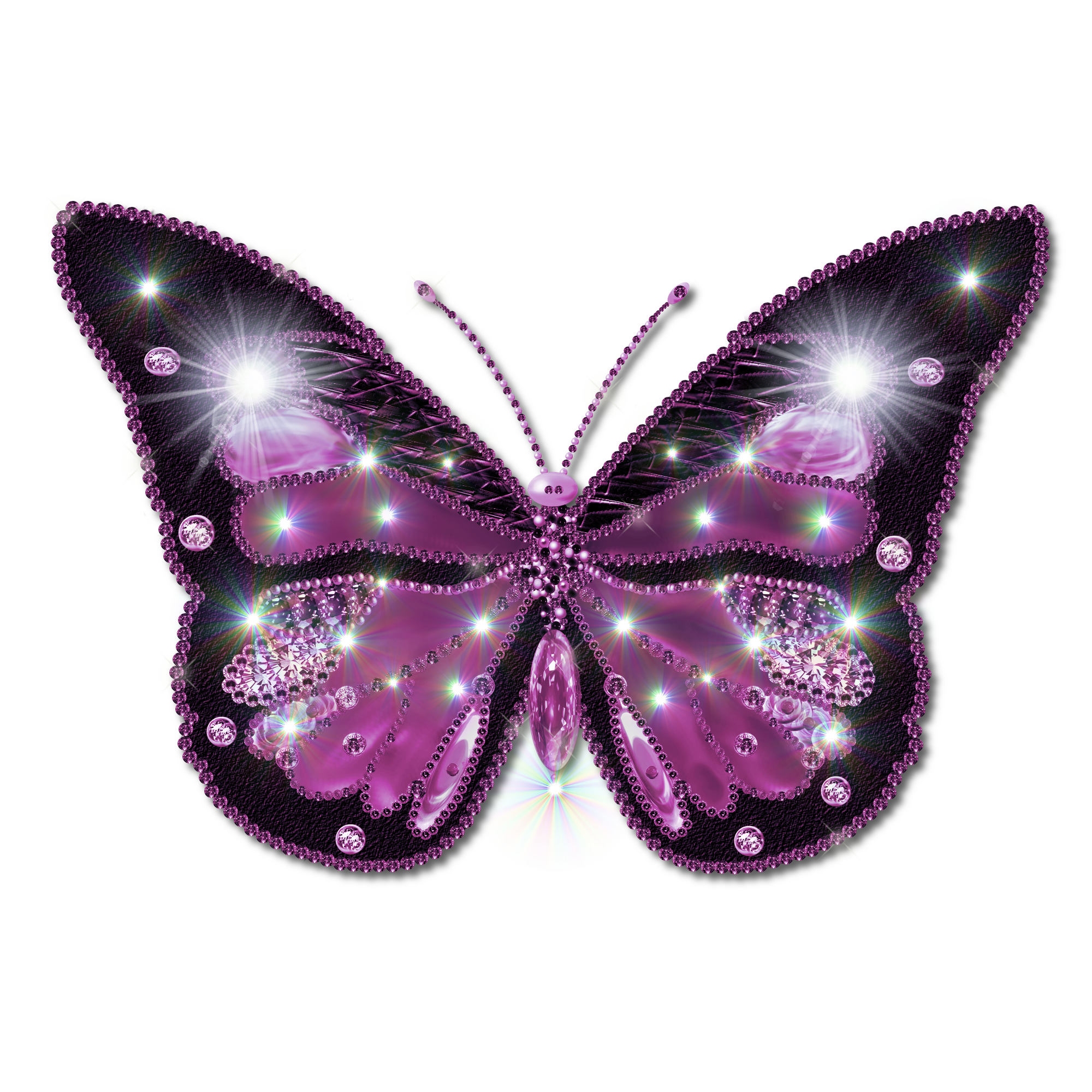 Free Butterfly PNG HD  - 130594