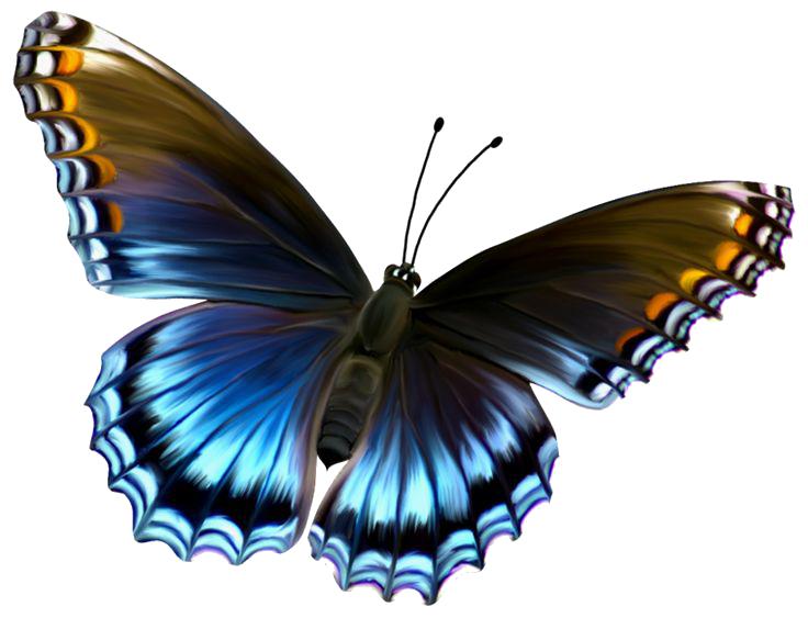 Flying Butterflies - Free Butterfly PNG HD