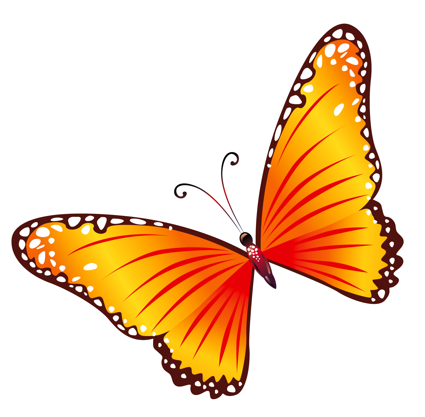 Transparent Orange Butterfly PNG Clipart - Free Butterfly PNG HD