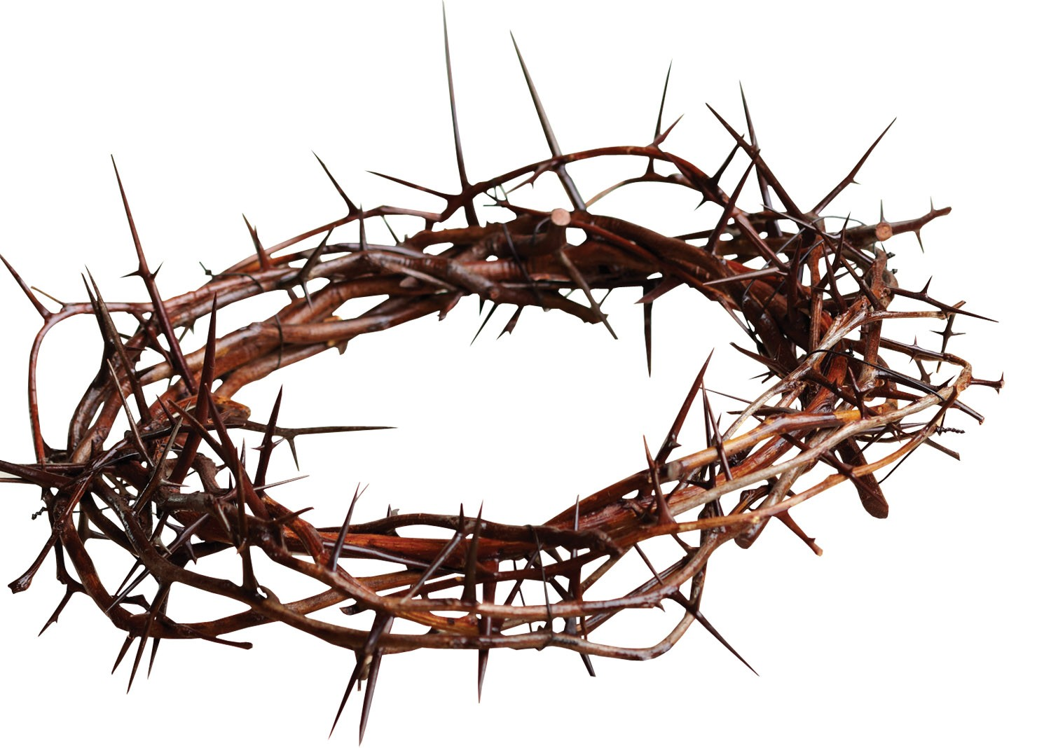 Thorns Free Christian Twitter Background C28com - Clipart library - Crown  Of Thorns PNG HD - Free Christian PNG HD