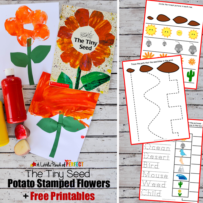 Flower Potato Stamping Craft and The Tiny Seed Free Printables: Make an  easy painted flower - Free Eric Carle PNG