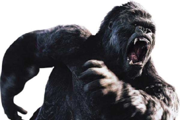 king kong gorilla png - Free Gorilla PNG