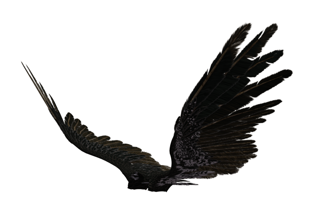Free Icons Png:Dark Angel Wings Png - Dark Angel PNG