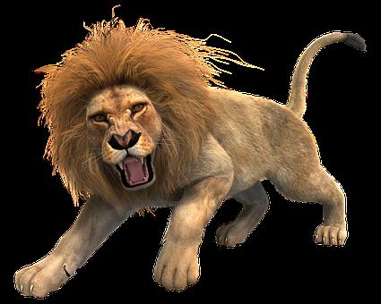 Free Lion PNG HD  - 128250