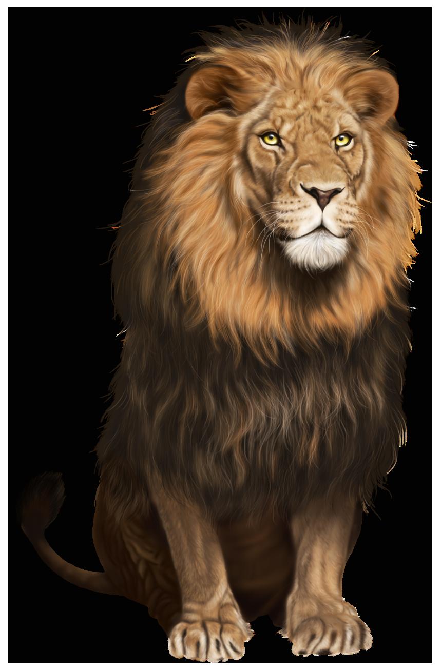 Free Lion PNG HD  - 128247