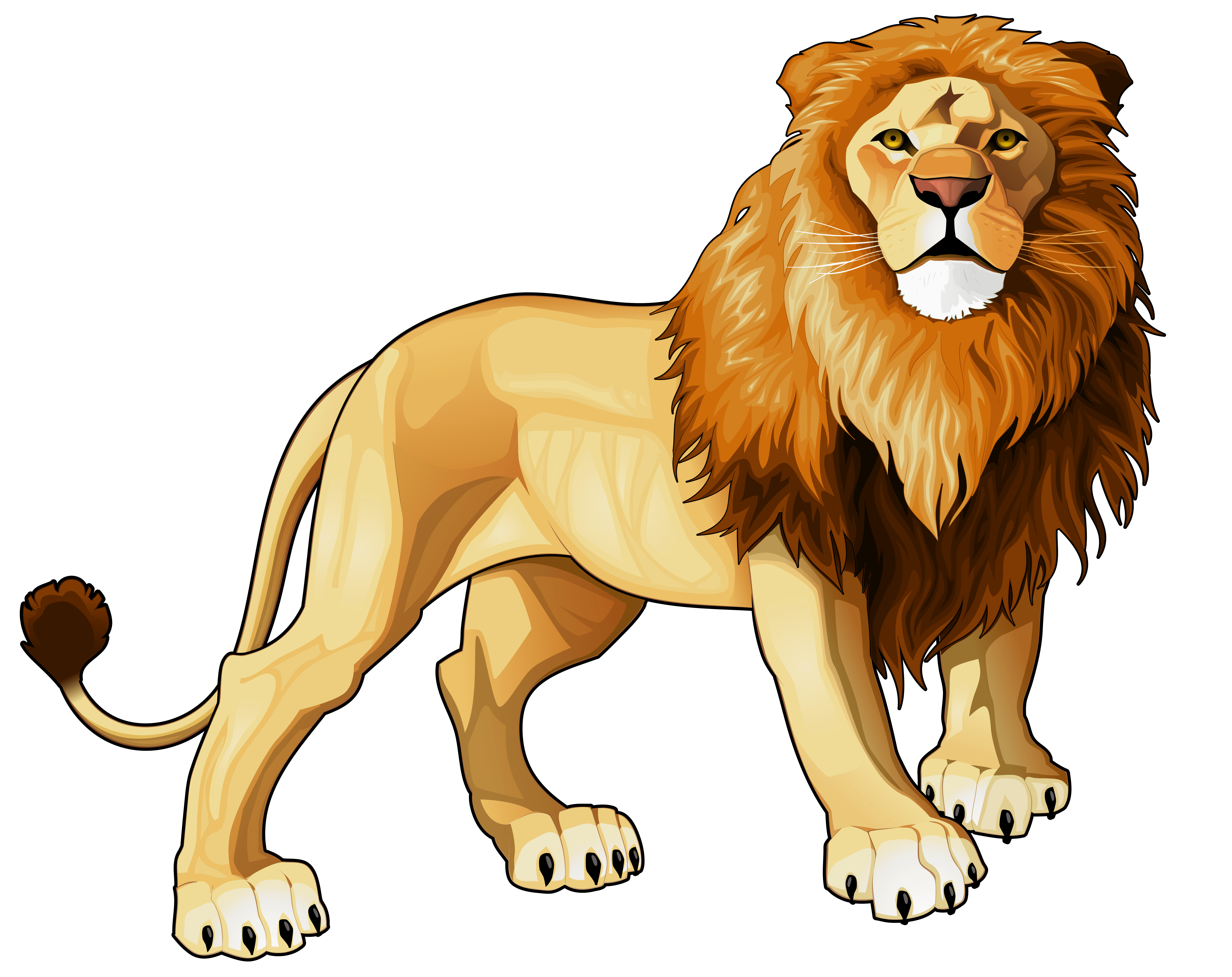 Realistic animal clipart black and white vector transparent - Free Lion PNG HD