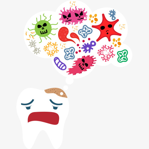 Cartoon of tooth germs Free PNG and PSD - Free PNG Germs