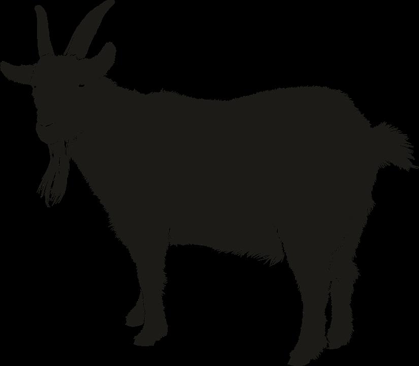 Free PNG Goat - 53100