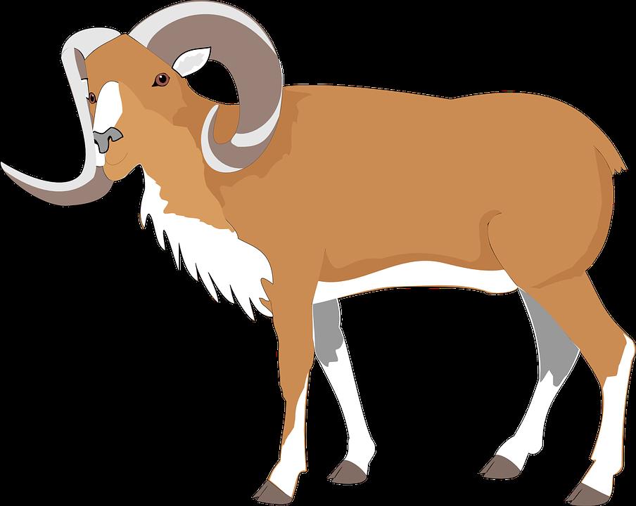 Free PNG Goat - 53098