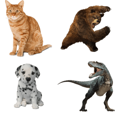 Animals - Free PNG HD Images For Commercial Use
