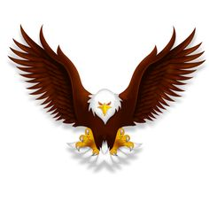 Eagle - Free PNG HD Of Eagles