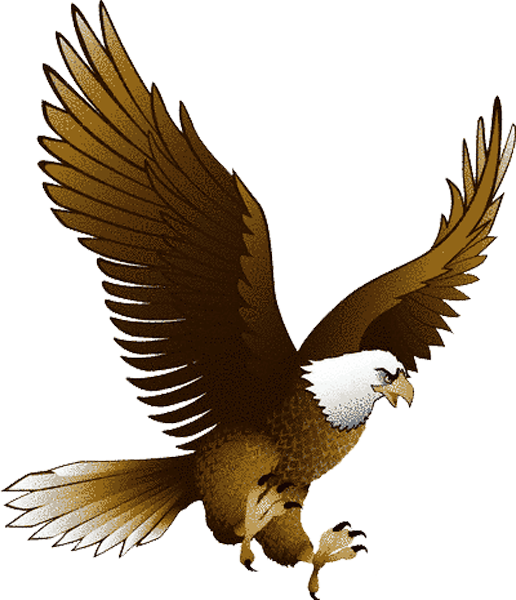 Eagle · Eagle PNG image, free picture download - Free PNG HD Of Eagles