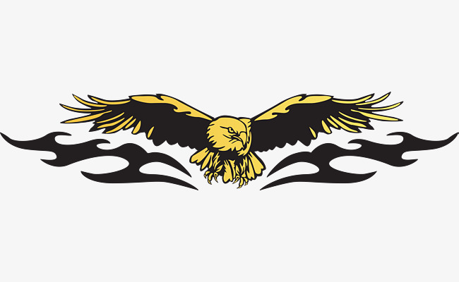 golden eagle, Eagle Soaring, Fly High, Eagles Fly PNG and Vector - Free PNG HD Of Eagles