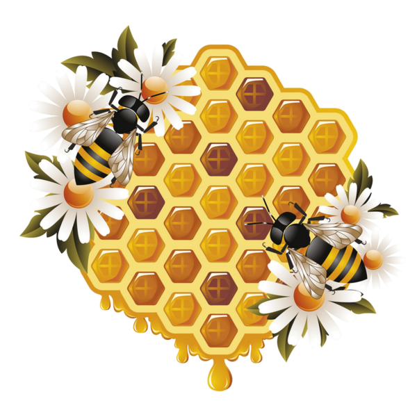 Honey Bees Clipart EPS Vector Drawings Available To Search From Thousands Of Royalty Free Illustration Providers