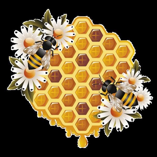 Free PNG Honey Bee - 47265