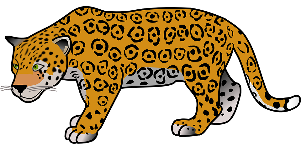 Animal, Jaguar, Dangerous, Mammal, Safari, Wild - Free PNG Jaguar