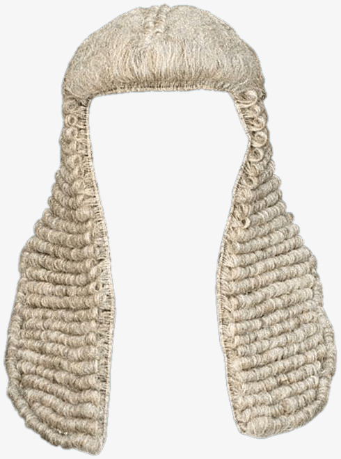 Free PNG Judge - 68610