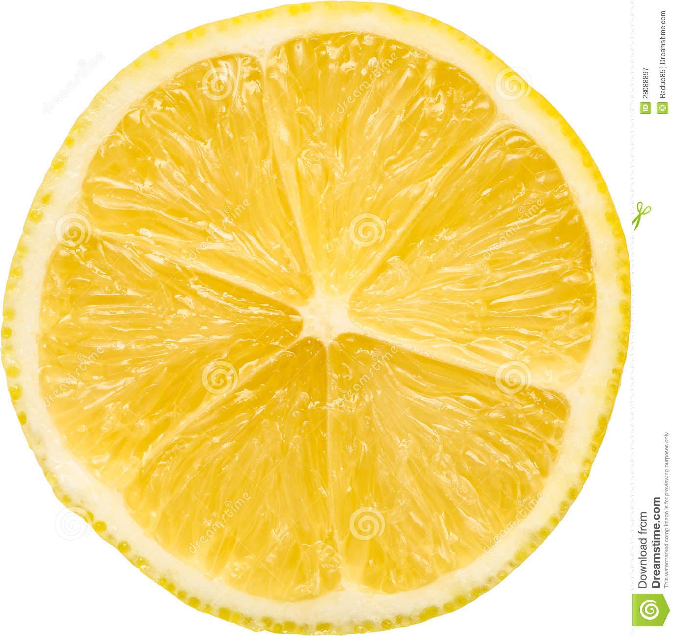 isolated lemon macro slice PlusPng.com  - Free PNG Lemon Slice