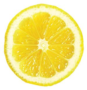 Lemon Slice Png image #38664 - Free PNG Lemon Slice