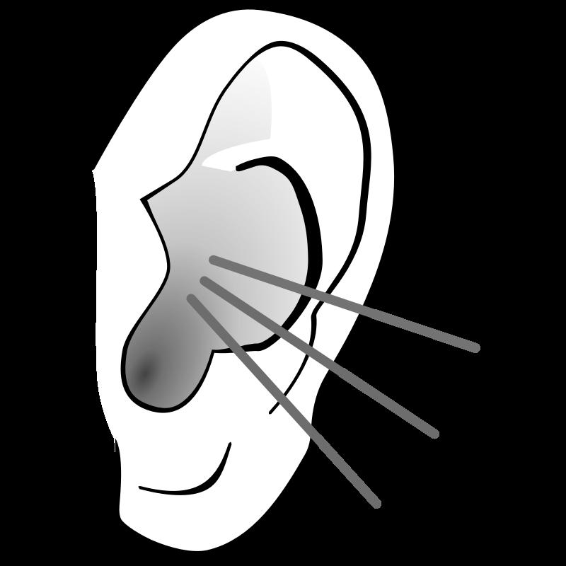 Listening Ear Clipart 2