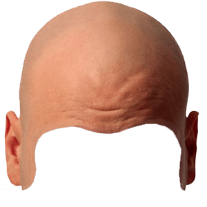 Bald head transparent background - Free PNG Of Body Parts