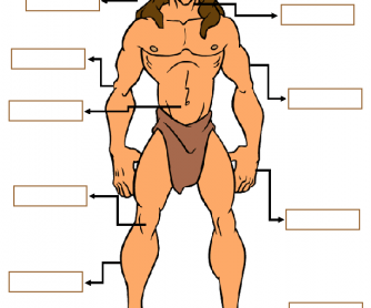 Body Parts - Free PNG Of Body Parts