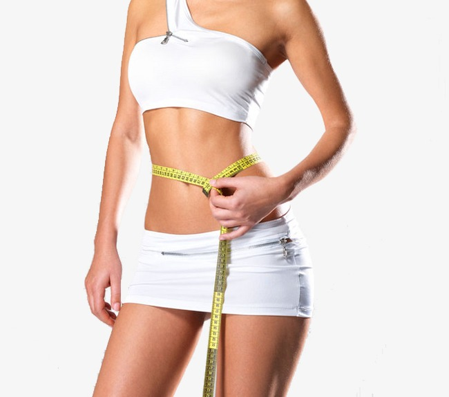 good shape, Lose Weight, Slimming, Body Parts PNG Image and Clipart - Free PNG Of Body Parts