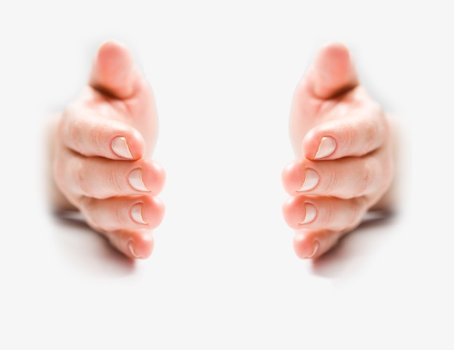 hands, Symmetry, Human Body Parts PNG and PSD - Free PNG Of Body Parts