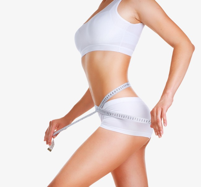 waist size, Lose Weight, Body Parts, Slimming PNG Image and Clipart - Free PNG Of Body Parts