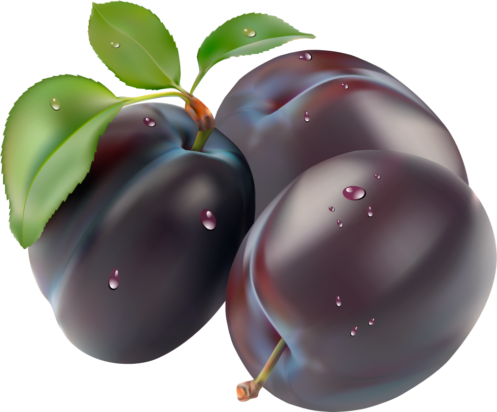 Plum PNG image - Free PNG Plums