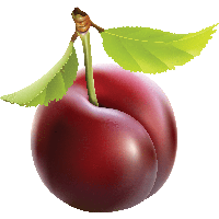 Free PNG Plums - 76688