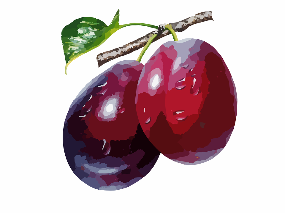 Plums, Food, Fruit, Ripe, Berry, Red, Organic, Sweet - Free PNG Plums