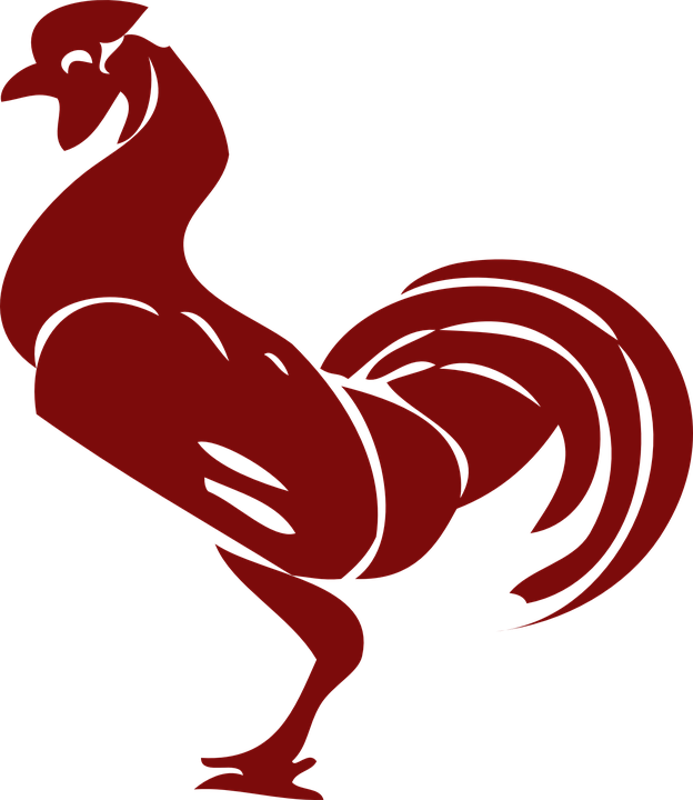 Free vector graphic: Rooster, Poultry, Cock, Chicken - Free Image on  Pixabay - 309772 - Free PNG Rooster